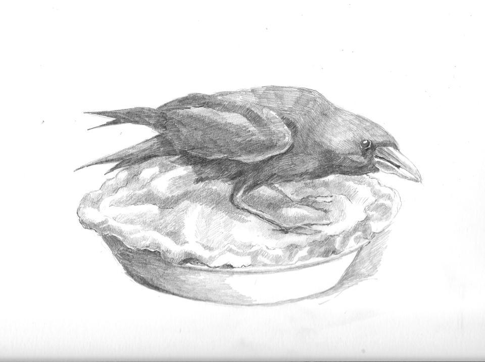 Crow on a pie