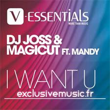 DJ Joss & Magicut feat Mandy - I Want U