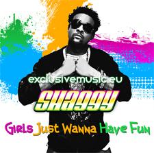 Shaggy - Girls Just Wanna Have Fun