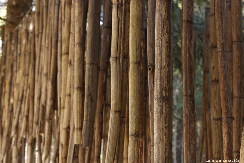 Tiges de bambou d'une oeuvre land art à Taninges sur le sentier art et nature