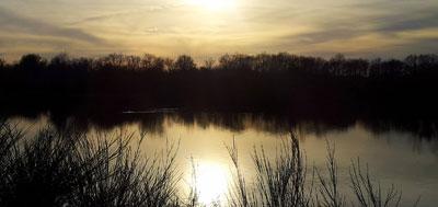 vacances de février en région centre sortie insolite randonnée marche nordique dans le parc naturel régional de la Brenne