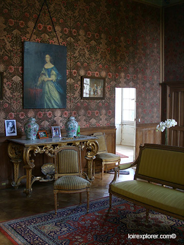 visite du Château de Selles salon avec LoireXplorer