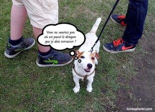 Geek Faeries à Selles sur Cher chien dragon