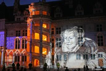 monuments et châteaux de la Loire ouverts tous les jours de l'année château de Blois