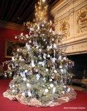 Noël au Château de Chenonceau monument ouvert toute l'année