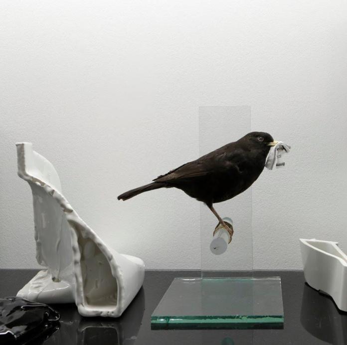 Shelf life (détail) - Peter BRIGGS - Brouillon général - copyright Photographe Albert – black-lux.com