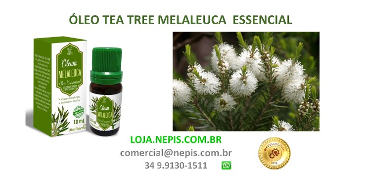 OLEUM TEA TREE MELALEUCA ÓLEO ESSENCIAL 10 ML