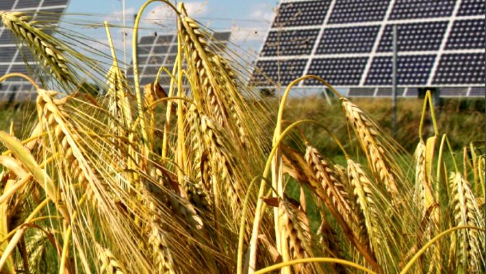 ENERGIA SOLAR NO COOPERATIVISMO