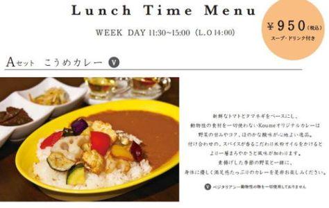 lokahi-20141103-koume-lunch