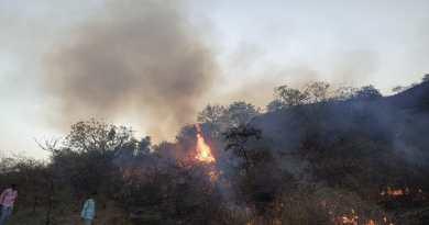 पालख्या डोंगराला वनवा,तरूणांनी आग आणली आटोक्यात.