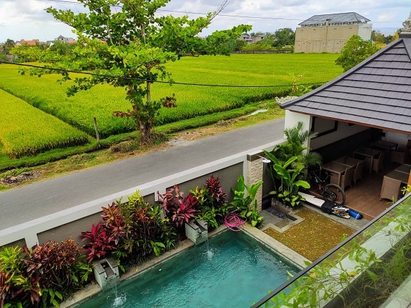 pool and ricefield view bali
