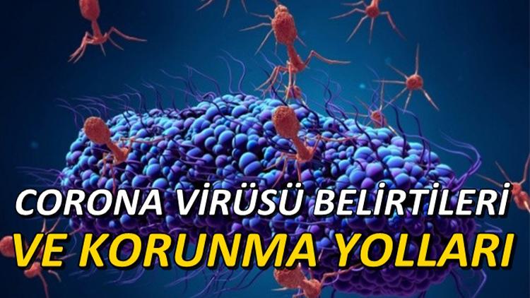 Korona Virüsü Nasıl Bulaşır