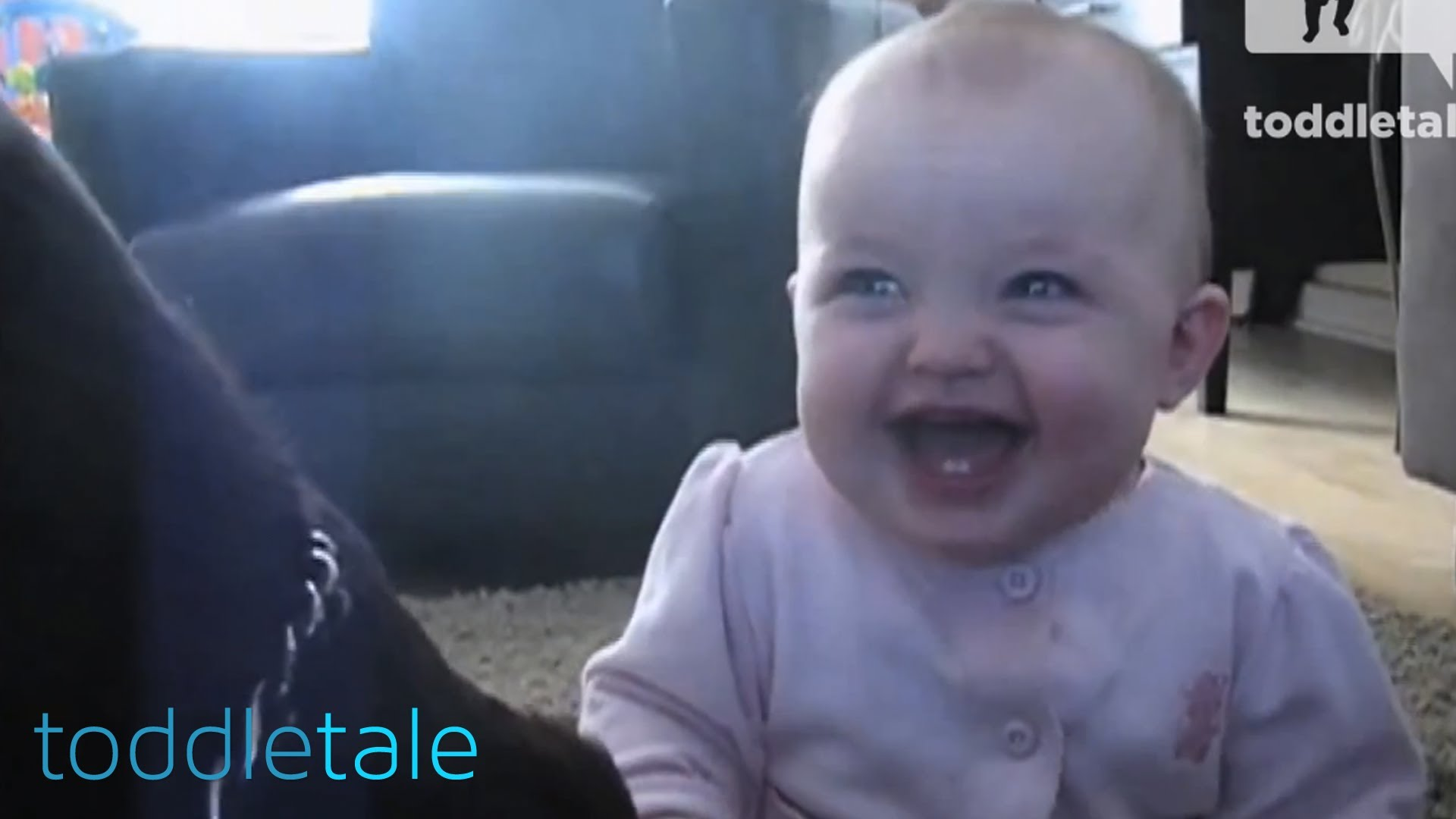 Bebé bem humorado a rir à gargalhada ao ver cão a comer pipocas