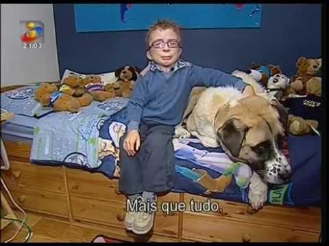 Uma amizade emocionante entre um menino e um cão