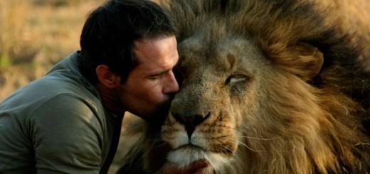 Que belos animais de estimação