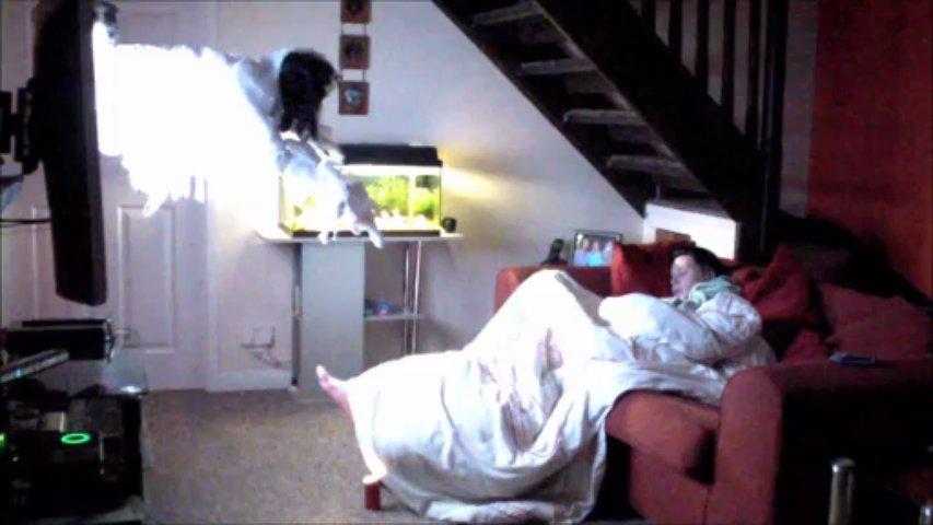 """Rapaz quase mata a namorada de susto com """"fantasma"""" a sair da TV"""