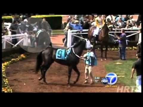 Homem enfrenta cavalo enfurecido para salvar menina