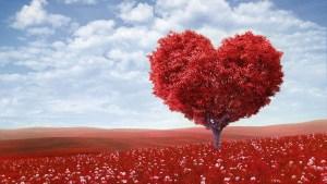 Agradecimientos, enlaces, reseñas que quiero compartir con todo mi corazón