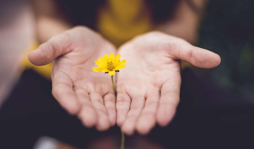 Charlemos juntas de nuestras dudas y vivencias sobre menopausia. Contacto lolamarin