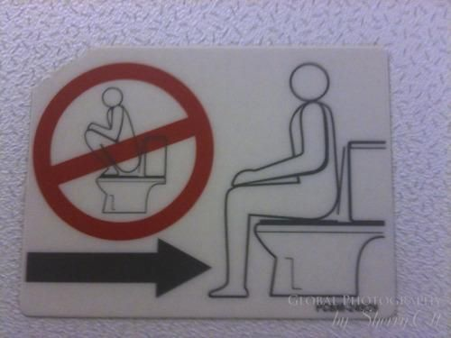 How to use the western toilet