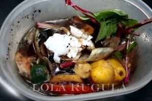 lola rugula compost at home