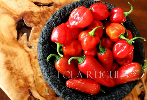 lola rugula homemade hot sauce recipe