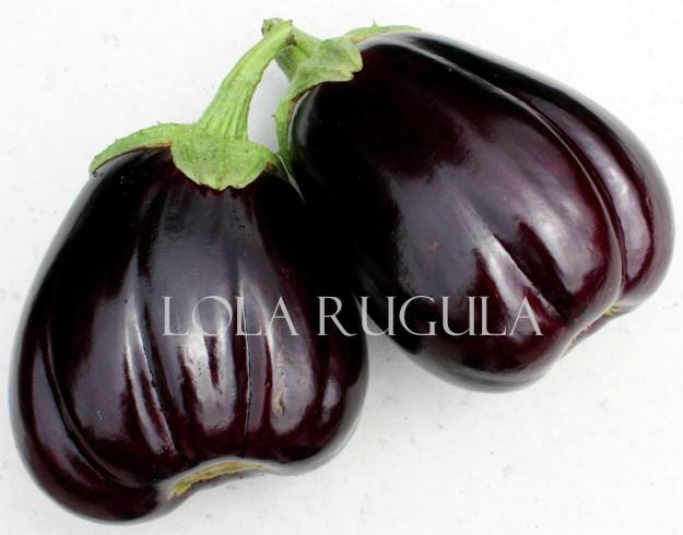 lola-rugula-eggplant-recipe