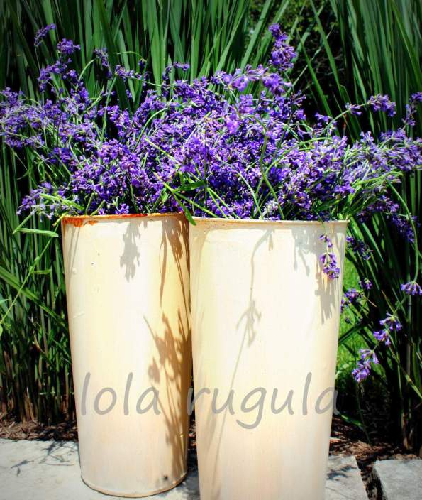 lola rugula french flower pot makeover original