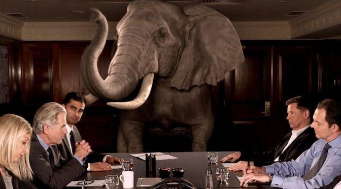 What Elephant?