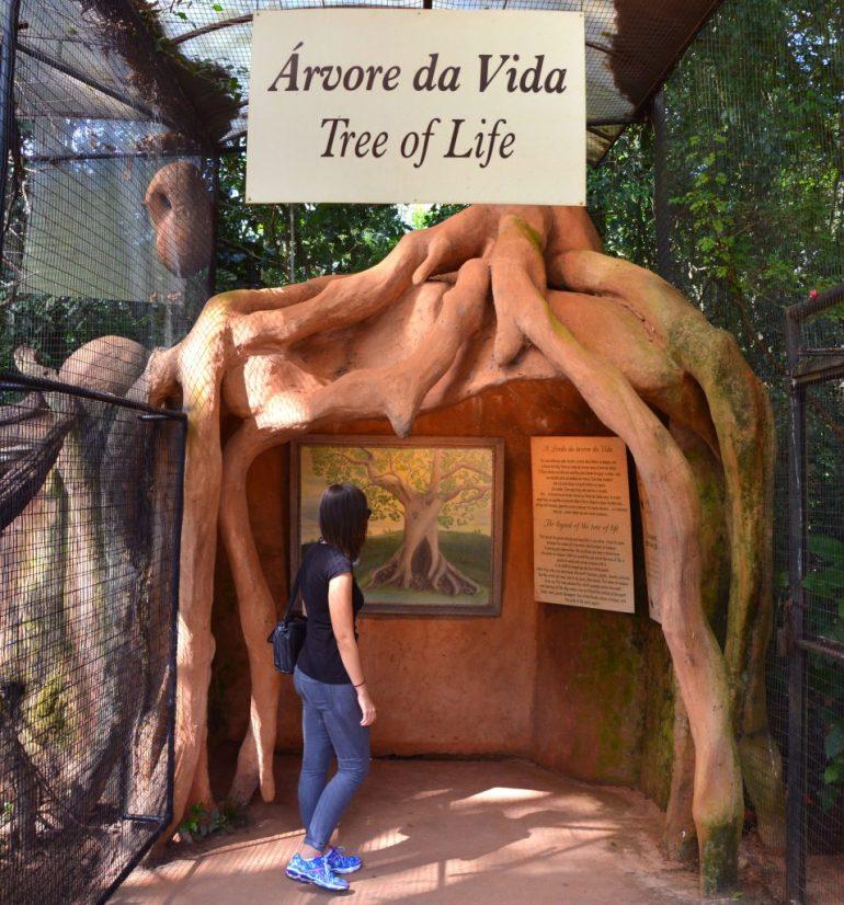 Parque das Aves - Árvore da Vida