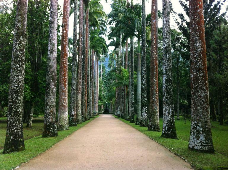 Rio 2016 - Jardim Botânico