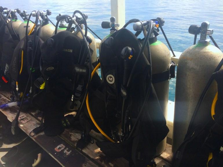 Mergulho em Paraty - 1