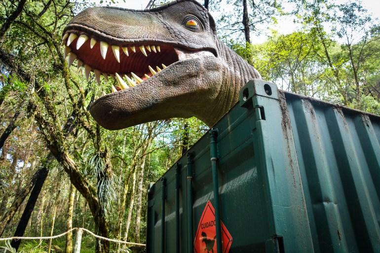 Vale dos Dinossauros - 10