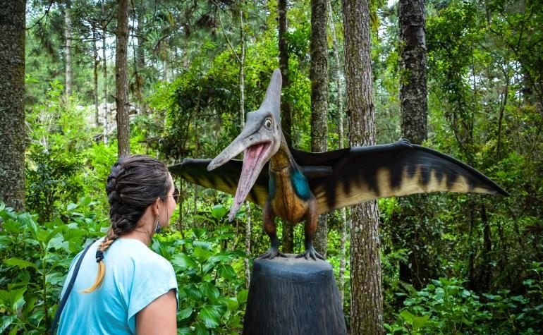 Vale dos Dinossauros - 5