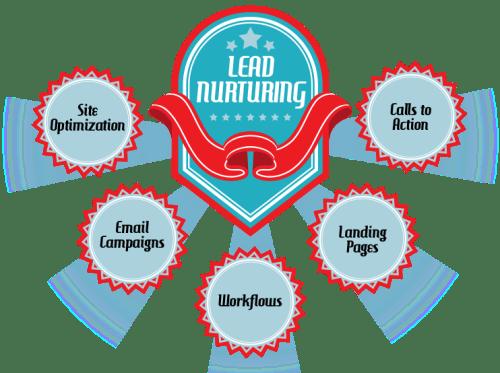 Lead_Nurturing proceso