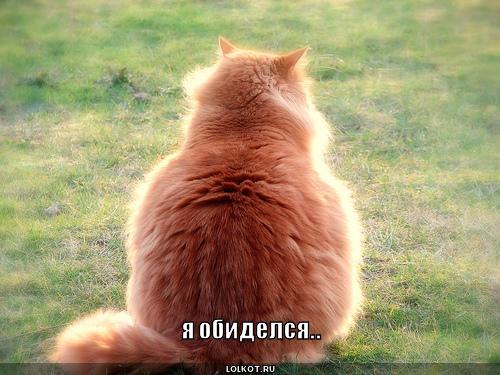обиделся ЛолкотРу