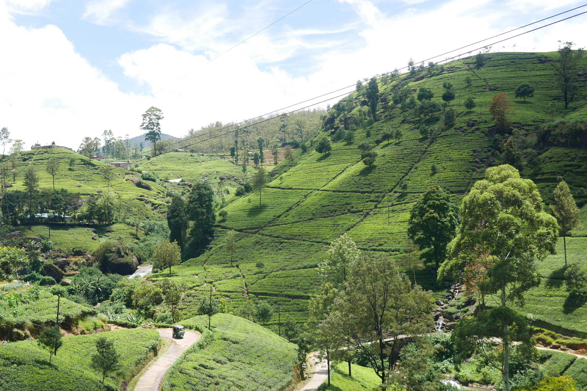 Must-Do Experiences when Travelling around Sri Lanka - lolleroll