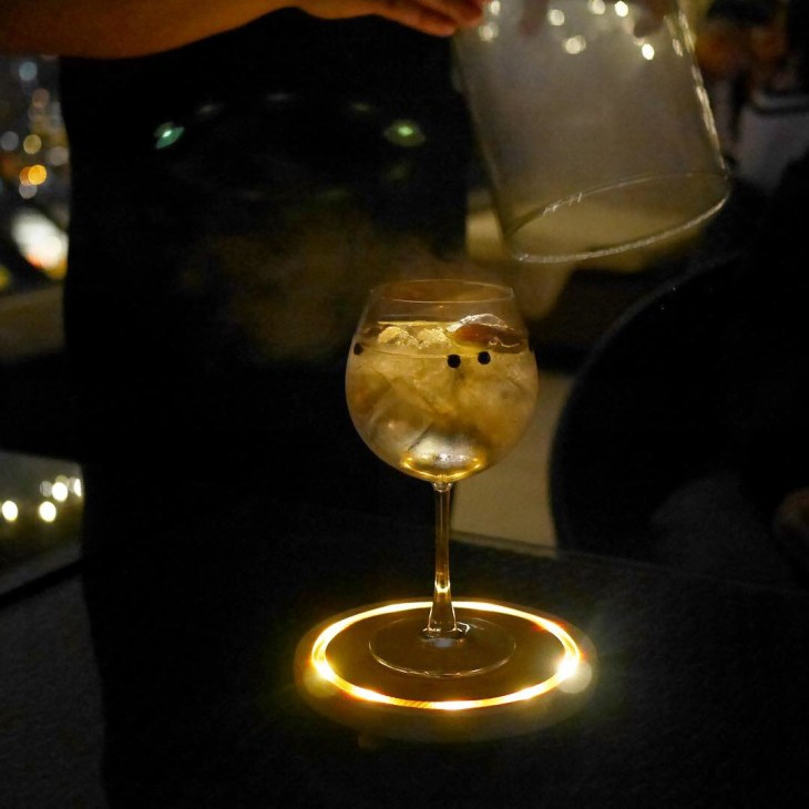 Fancy Gin and Tonic with smoke