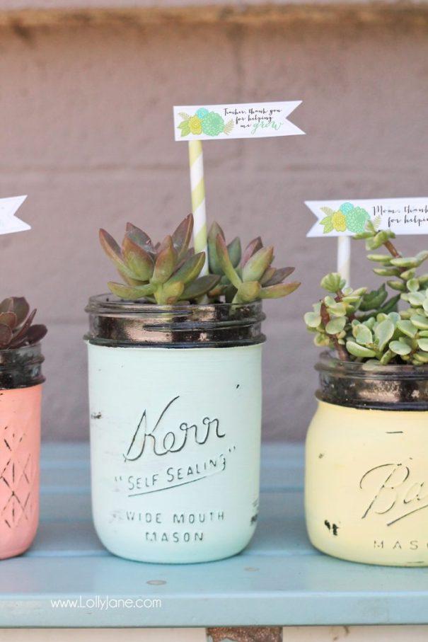 mason jar crafts, mason jar ideas, succulent mason jar planters
