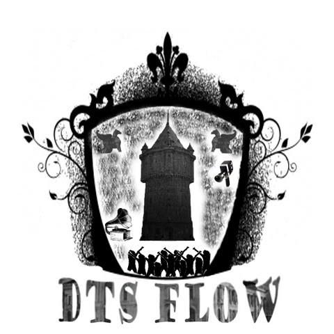 Logo DTS FLOW