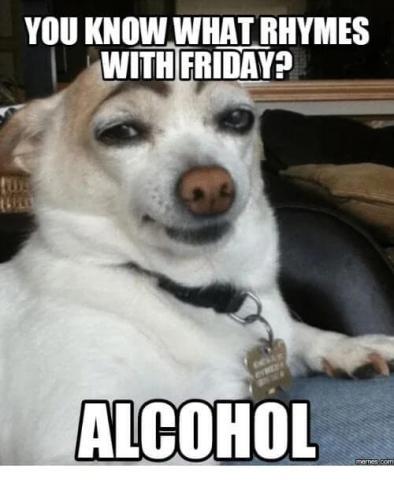 "It's Thursday you drunk fool."" - Meme Fort"