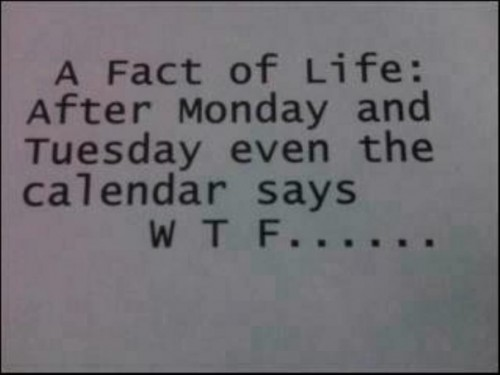 After Monday, Tuesday, WTF