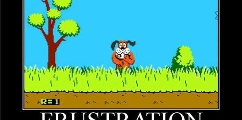 Why Can't You Shoot The Dog in Duck Hunt?