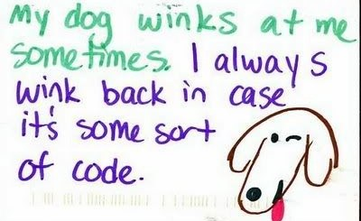 It's Always Good To Wink At Your Dog