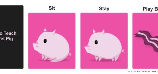 Tricks You Can Teach A Pig