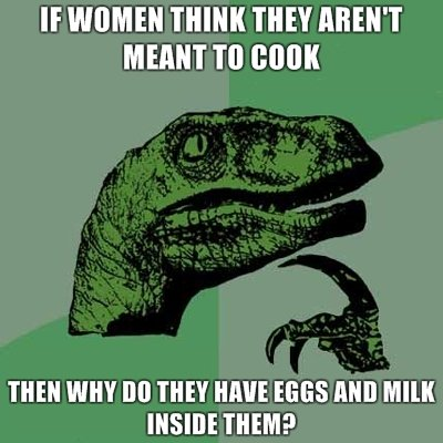 What Do You Mean Women Aren't Made To Cook?