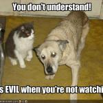 LOL Zombie Cats Evil