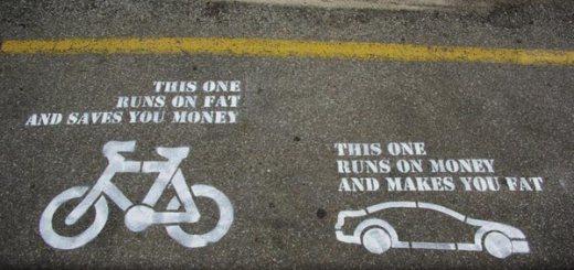 Bike or Car? Money or Fat?