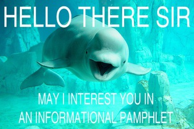 Hi There. Can I Interest You In A Pamphlet?