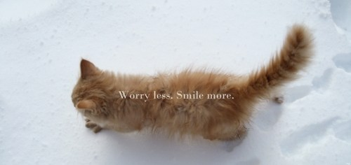 Worry Less. Smile More.
